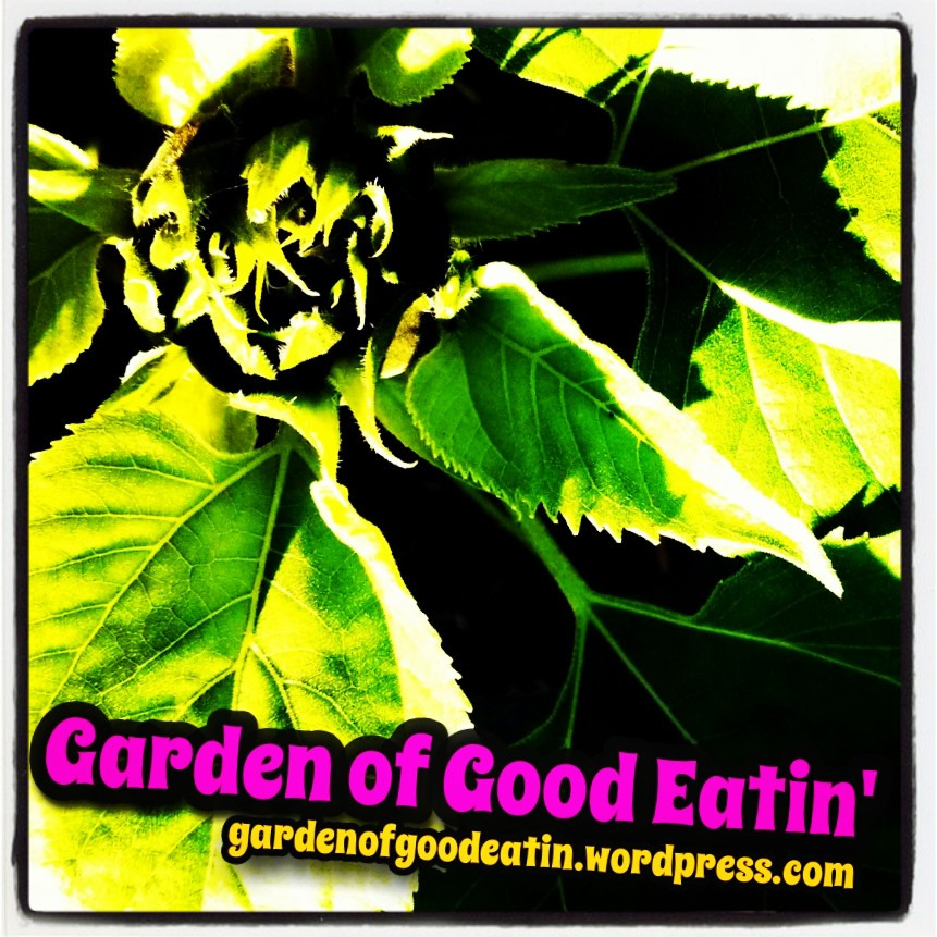 Garden of Good Eatin'